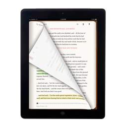 Ipad flipping small